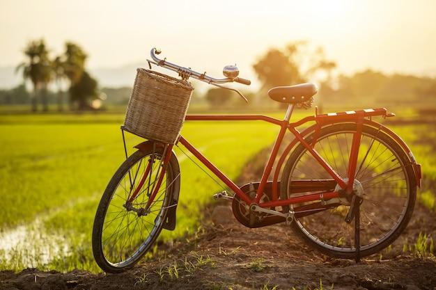 Bicicleta clássica de estilo vermelho japão no campo verde