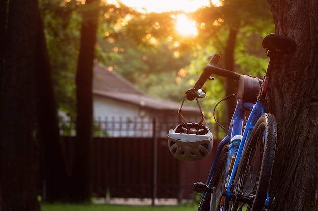 Bicicleta de cascalho em pé perto da árvore no parque ao pôr do sol.