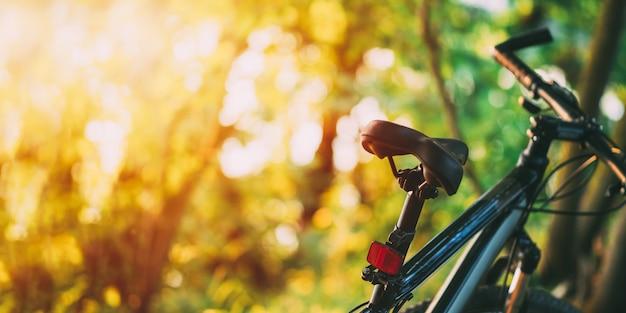 Bicicleta de montanha na floresta ao pôr do sol.