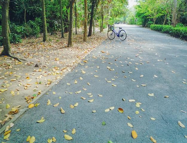 Bicicleta estacionada na estrada de asfalto no parque