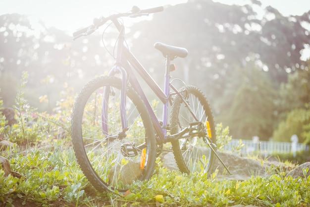 Bicicleta estacionada na grama