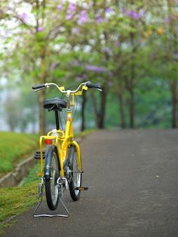 Bicicleta na estrada do jardim