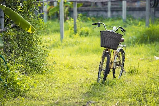 Bicicleta na grama verde