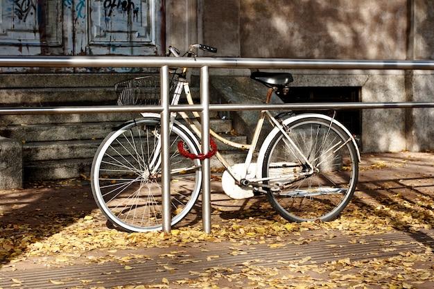 Bicicleta no outono