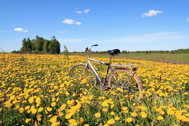 Bicicleta velha entre dentes de leão amarelos