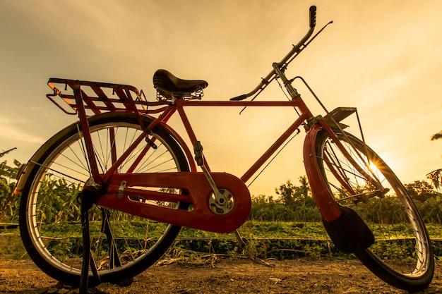 Bicicleta vermelha no jardim com céu pôr do sol