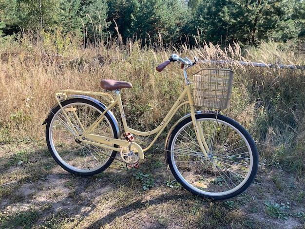 Bicicleta vintage para caminhar no campo