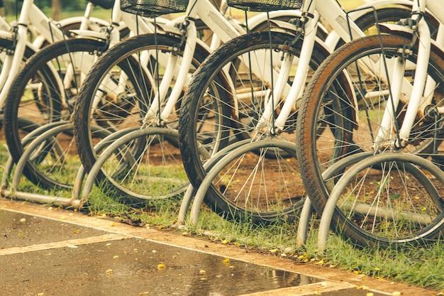 Bicicletas brancas que estacionam em uma fileira.
