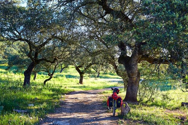Bike pela via de la plata caminho na andaluzia dehesa