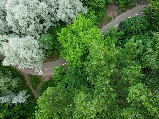Bike road pela floresta verde de verão, vista aérea