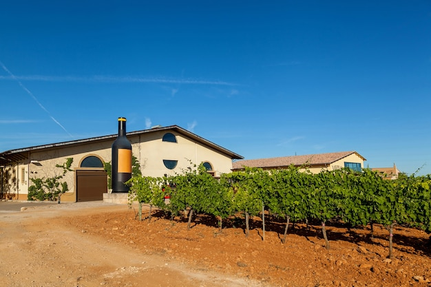 Binissalem, espanha 23 de junho um dos símbolos de maiorca - destilaria jose luis ferrer com vinhas em uma área de vários hectares e muitas variedades 23 de junho binissalem, espanha 2016
