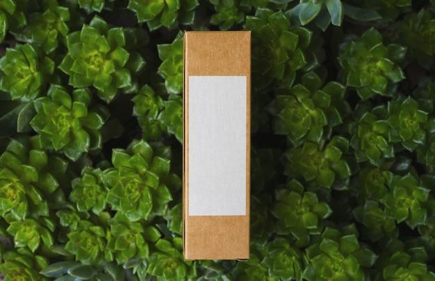 Bio caixa de papelão com etiqueta branca em fundo natural com plantas