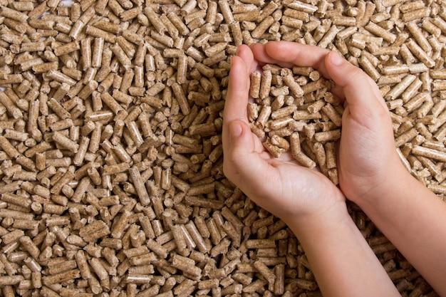 Biocombustíveis. pellets de madeira na mão