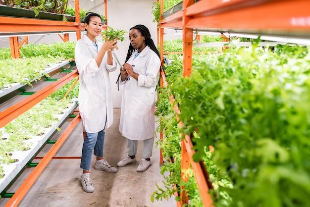 Biólogas asiáticas e africanas em trajes de trabalho estudando novos tipos de plantas em pé no corredor de uma estufa
