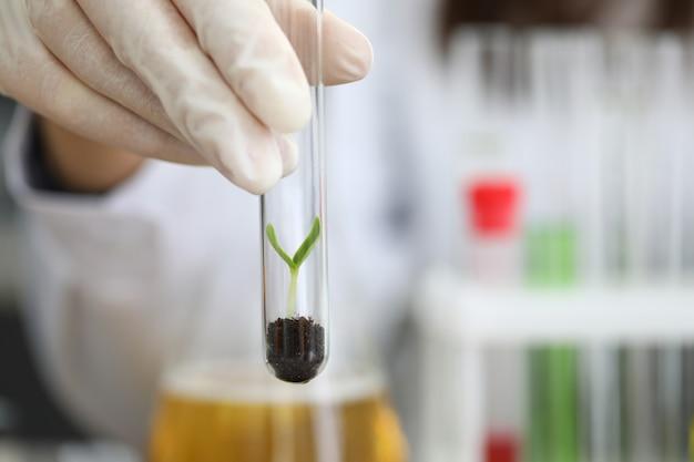 Biólogo qualificado em teste de natureza laboratorial
