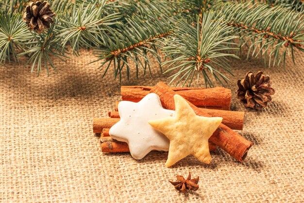 Biscoito de gengibre de natal em saco com canela, anis estrelado e galhos de árvore do abeto natural com cones. efeito de tonificação de cor.