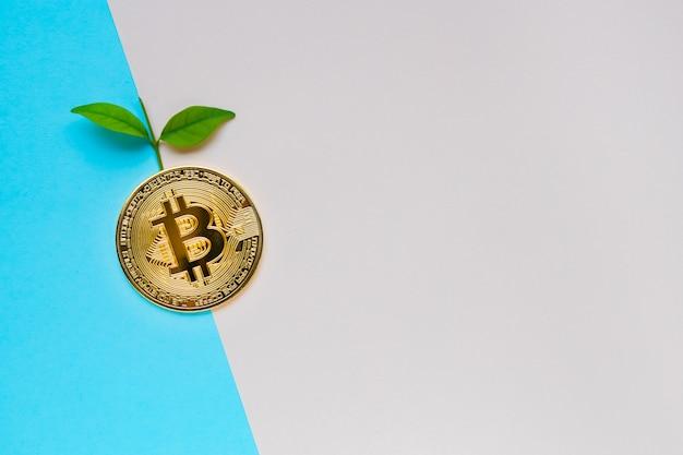 Bitcoin dourado com folhas