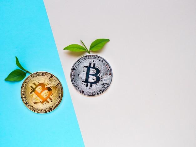 Bitcoins com folhas sobre fundo azul e rosa