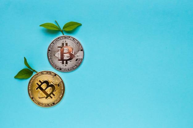 Bitcoins com folhas sobre fundo azul