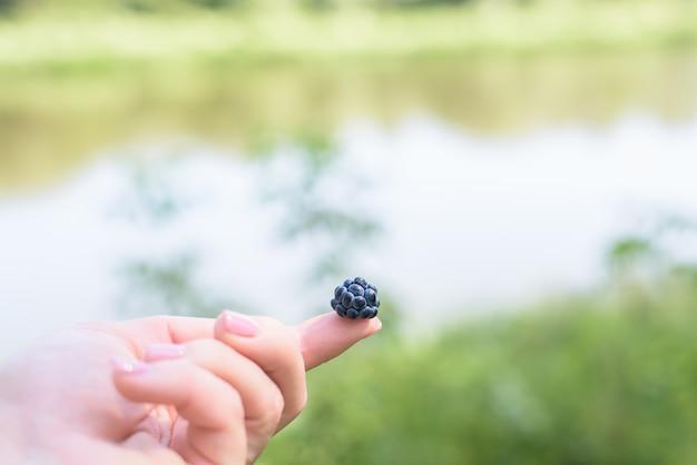 Blackberry no dedo, berry detém uma mão feminina. uma baga é azul escuro. fechar-se