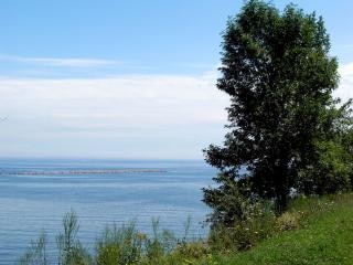 Blefes milwaukee, água lakemichigan, natureza