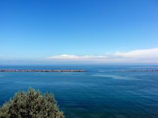 Blefes milwaukee, lago
