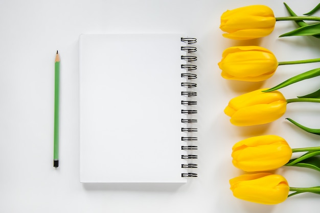 Bloco de notas aberto, lápis e tulipas amarelas