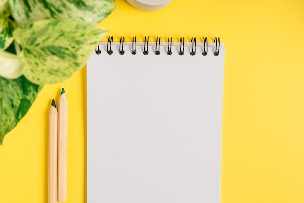 Bloco de notas em branco da área de trabalho com espaço para texto. postura plana de fundo de mesa de trabalho amarelo com uma xícara de chá e plantas.