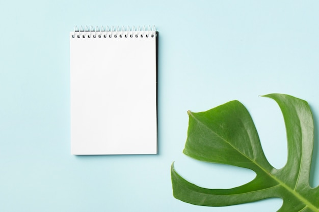 Bloco de notas em espiral e folha de monstera verde sobre fundo azul