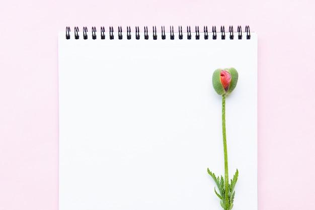 Bloco de notas para anotações e broto de uma flor de papoula