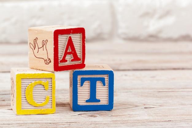 Blocos de brinquedo de madeira com o texto: gato