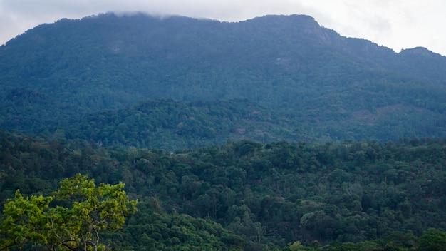 Blue rocky western ghats peak em tamil nadu