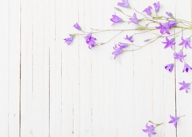 Bluebel flores om espaço em madeira branco
