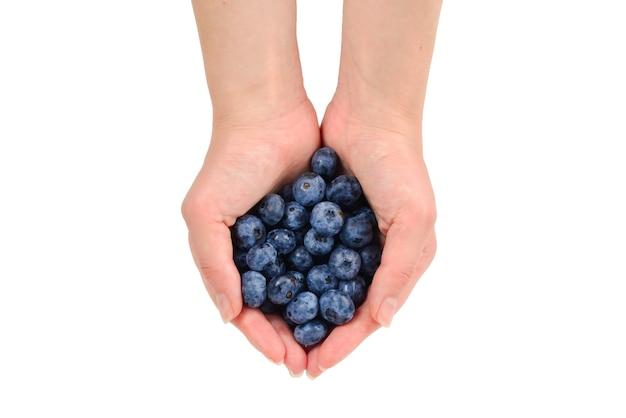 Bluepberry mantido em mãos isoladas no fundo branco.