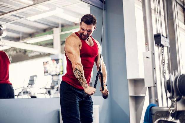 Bodybuilder considerável muscular da aptidão que faz o exercício pesado para o tríceps