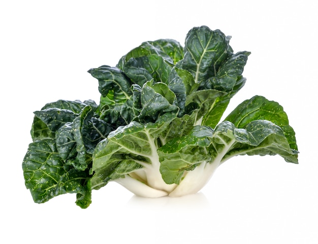 Bok choy vegetal isolado no branco