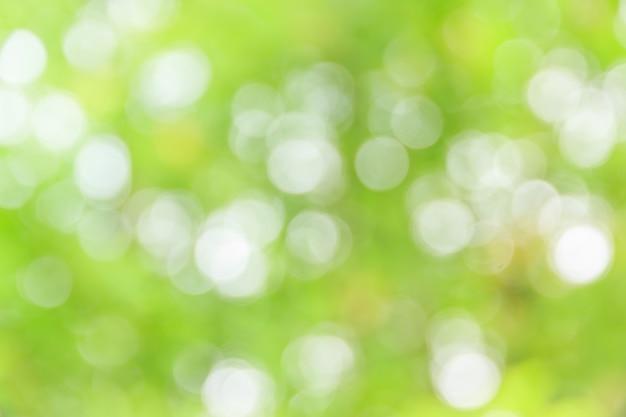Bokeh abstrata e fundo verde natureza turva