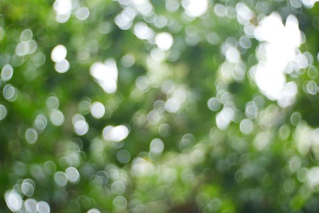 Bokeh de fundo, árvore de natal bokeh luz na cor dourada amarela verde