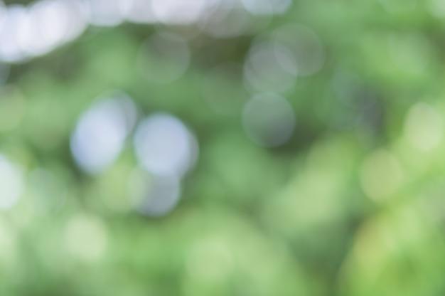 Bokeh de luz verde da luz natural
