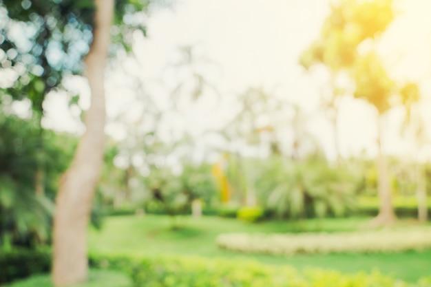 Bokeh desfocado e desfocar o fundo das árvores do jardim na luz do sol com tons vintage.