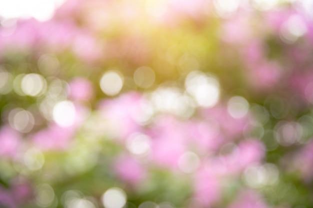 Bokeh natureza verde e flor