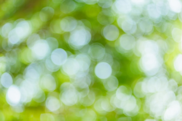 Bokeh verde com círculos. tema abstrato de verão.