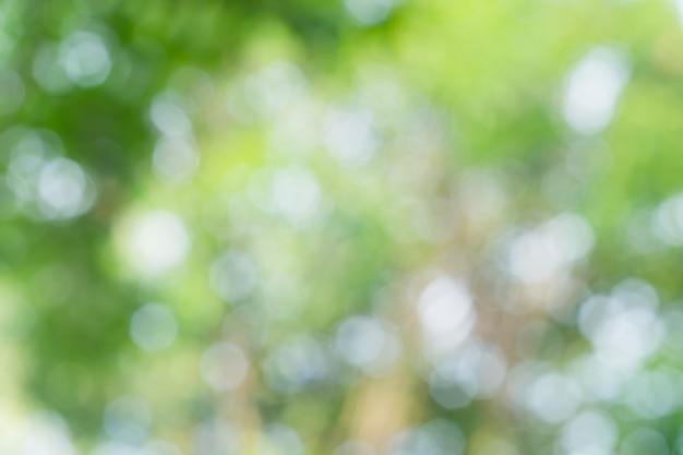 Bokeh verde fora do fundo do foco