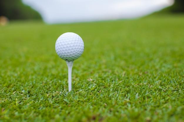 Bola de golfe em um tee contra o campo de golfe