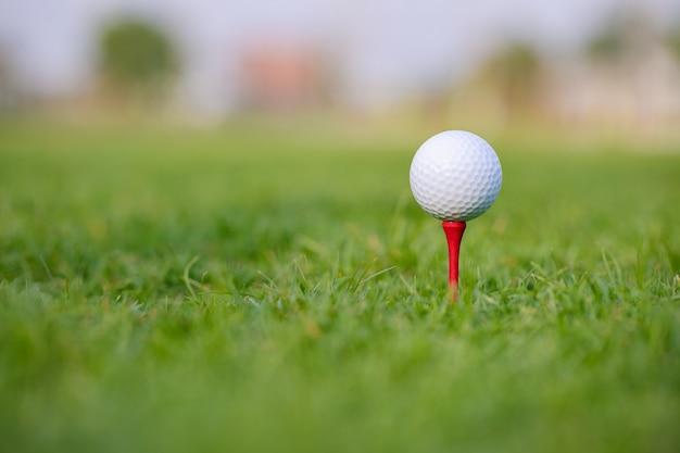 Bola de golfe no tee pronta para ser atirada em um lindo estádio verde