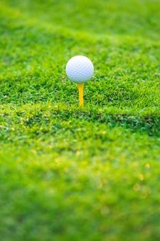 Bola de golfe no tee pronto para ser baleado