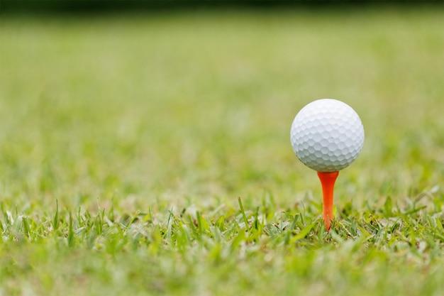 Bola de golfe no verde