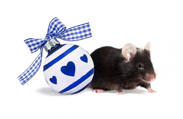 Bola de natal branca e azul com corações decorados com laço. rato preto, símbolo do ano novo 2020 isolado no branco com sombras