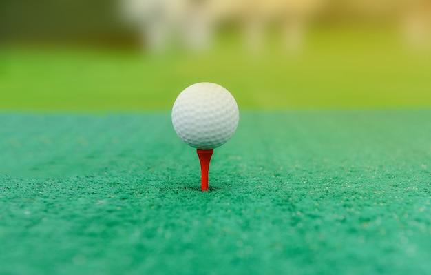 Bolas de golfe nos pinos com grama que, close-up vista da bola de golfe no campo de golfe