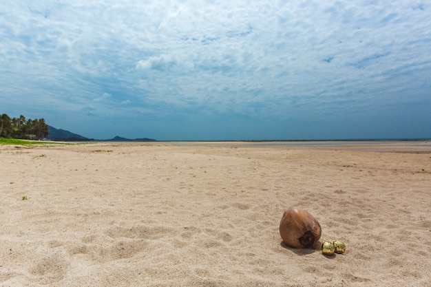 Bolas de natal ouro na areia perto de coco